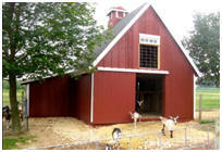 Pole-Frame Pet Goat Barn