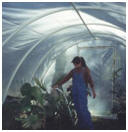 Free Hoop House Building Plans